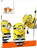 Cattivissimo Me 3 (Steelbook)(DVD + Blu-Ray)