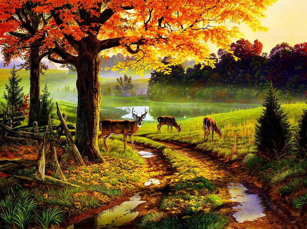 A Bend in The Road 1000 pc Jigsaw Puzzle by SunsOut