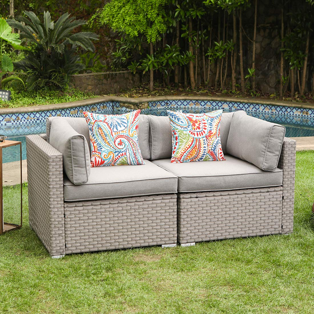 COSIEST 2-Piece Outdoor Furniture Loveseat Wicker Sectional Sofa Set w Warm Gray Thick Cushions, 2 Floral Fantasy Pillows for Garden, Pool, Backyard by COSIEST