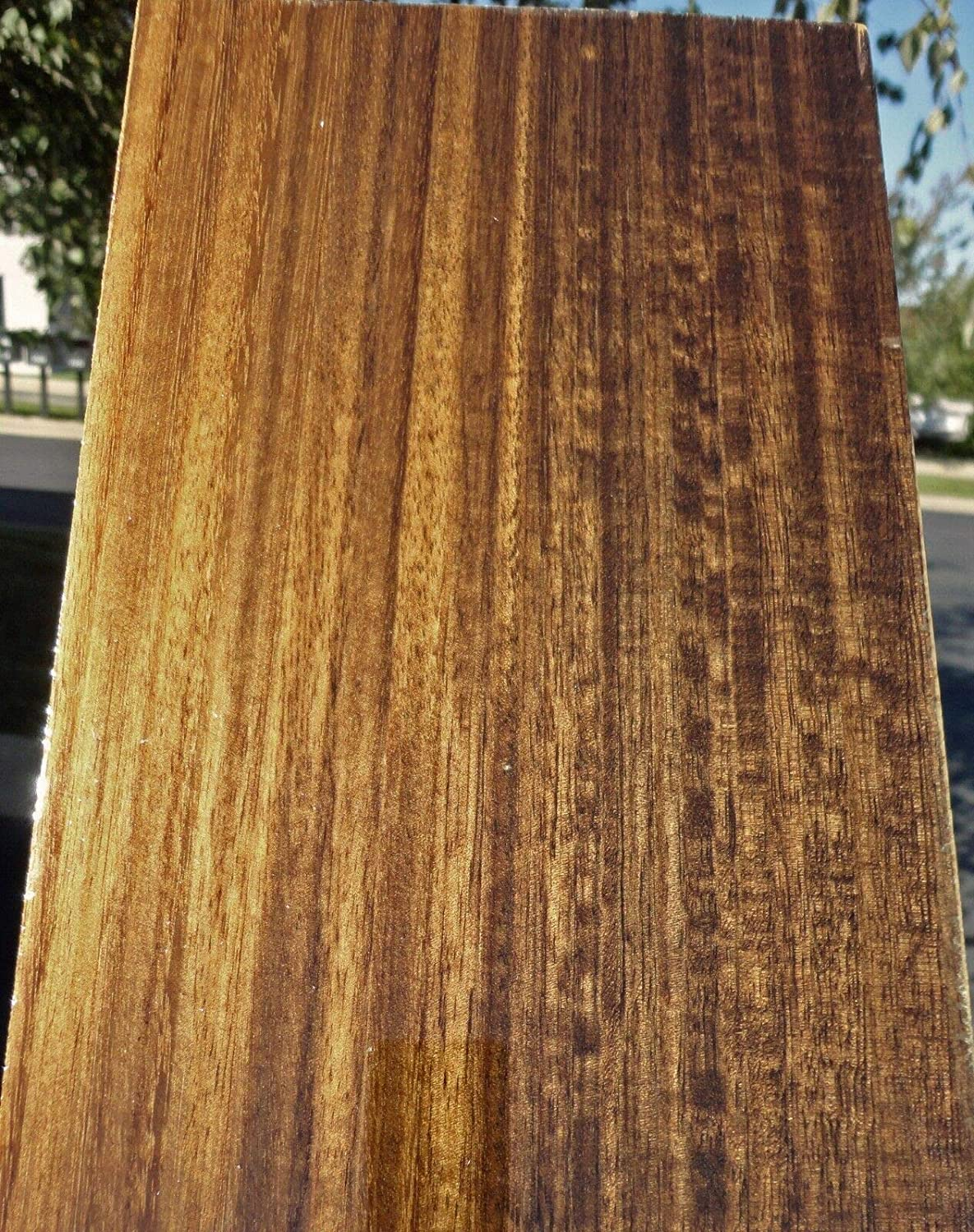 Smoked Fumed Eucalyptus Wood Veneer 6 5 X 30 Raw No