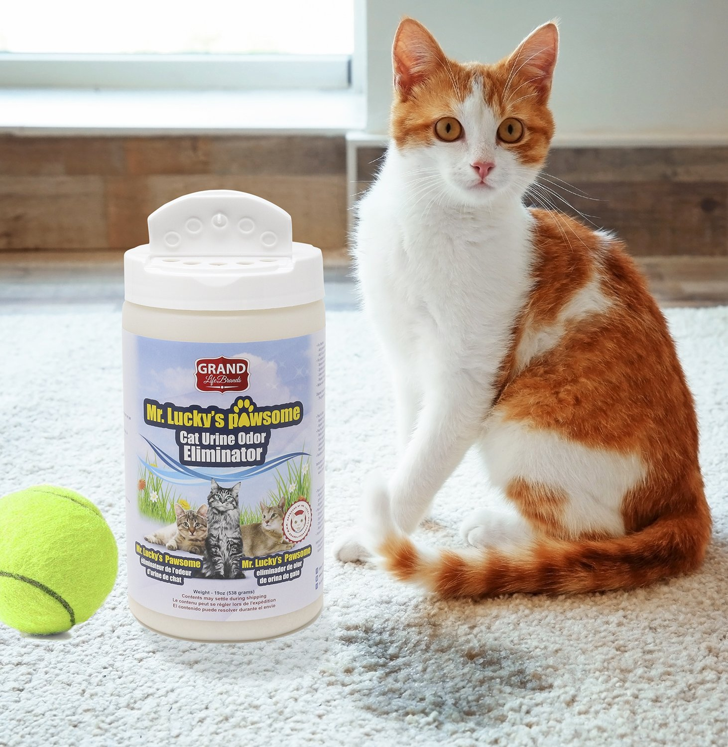 Amazon.com : GrandLifeBrands Mr. Luckys PAWsome Cat Urine Odor Eliminator keeps the cat litter boxes smelling fresh, and helps felines and their humans ...