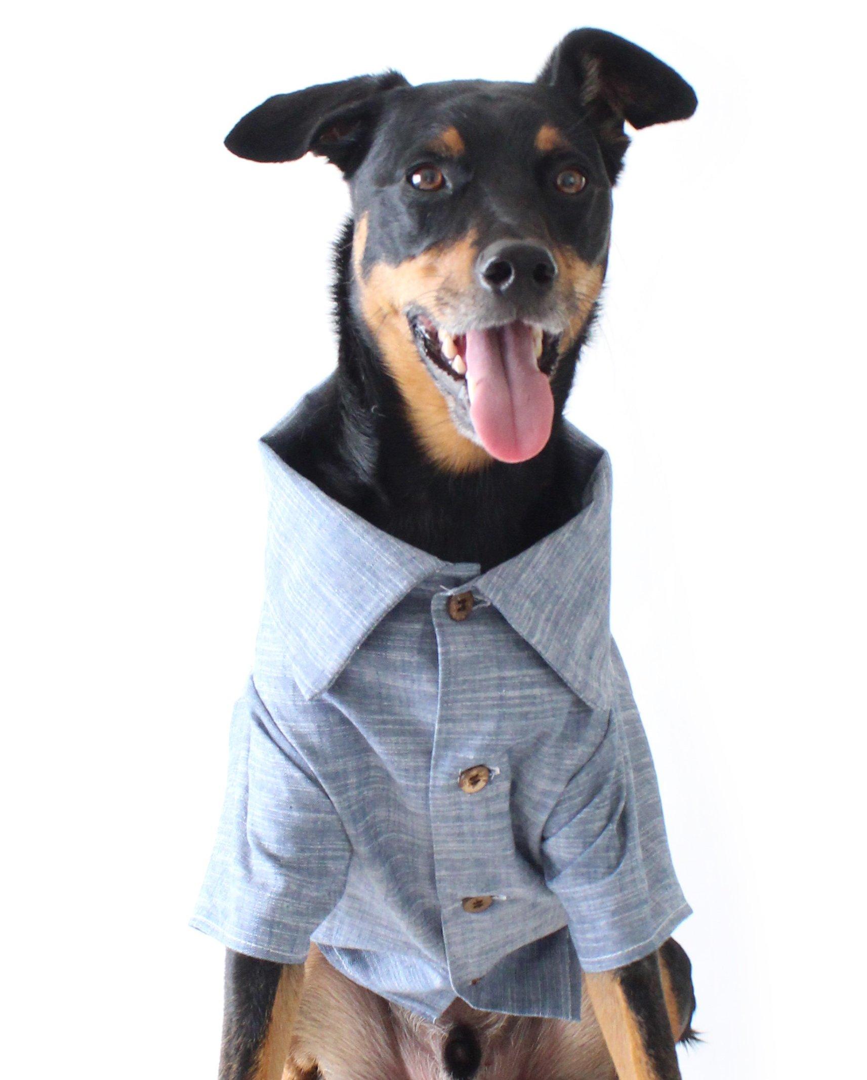 Dog Threads™ Chambray Dog Shirt by Chambray Shirt Denim Button Down Dog Shirt Blue (XS (4-12lbs))