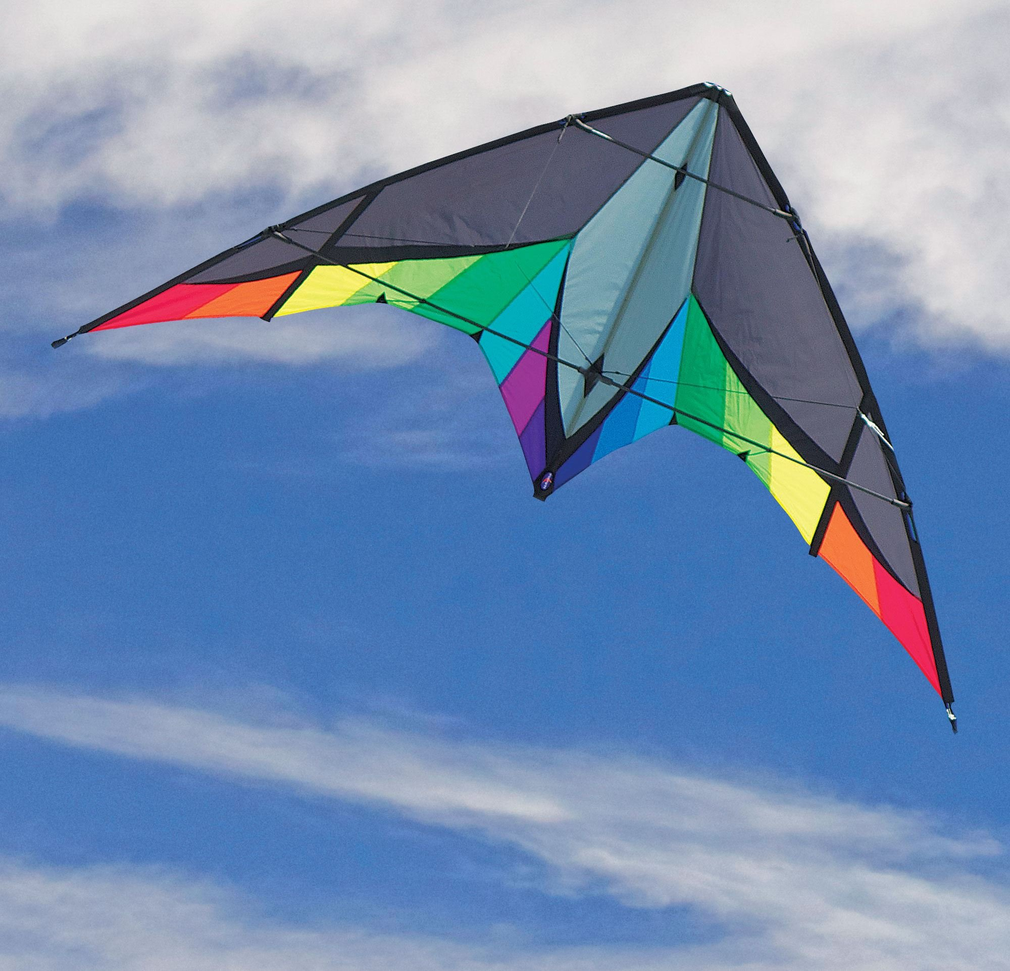 Into The Wind Panther Stunt Kite by Into The Wind