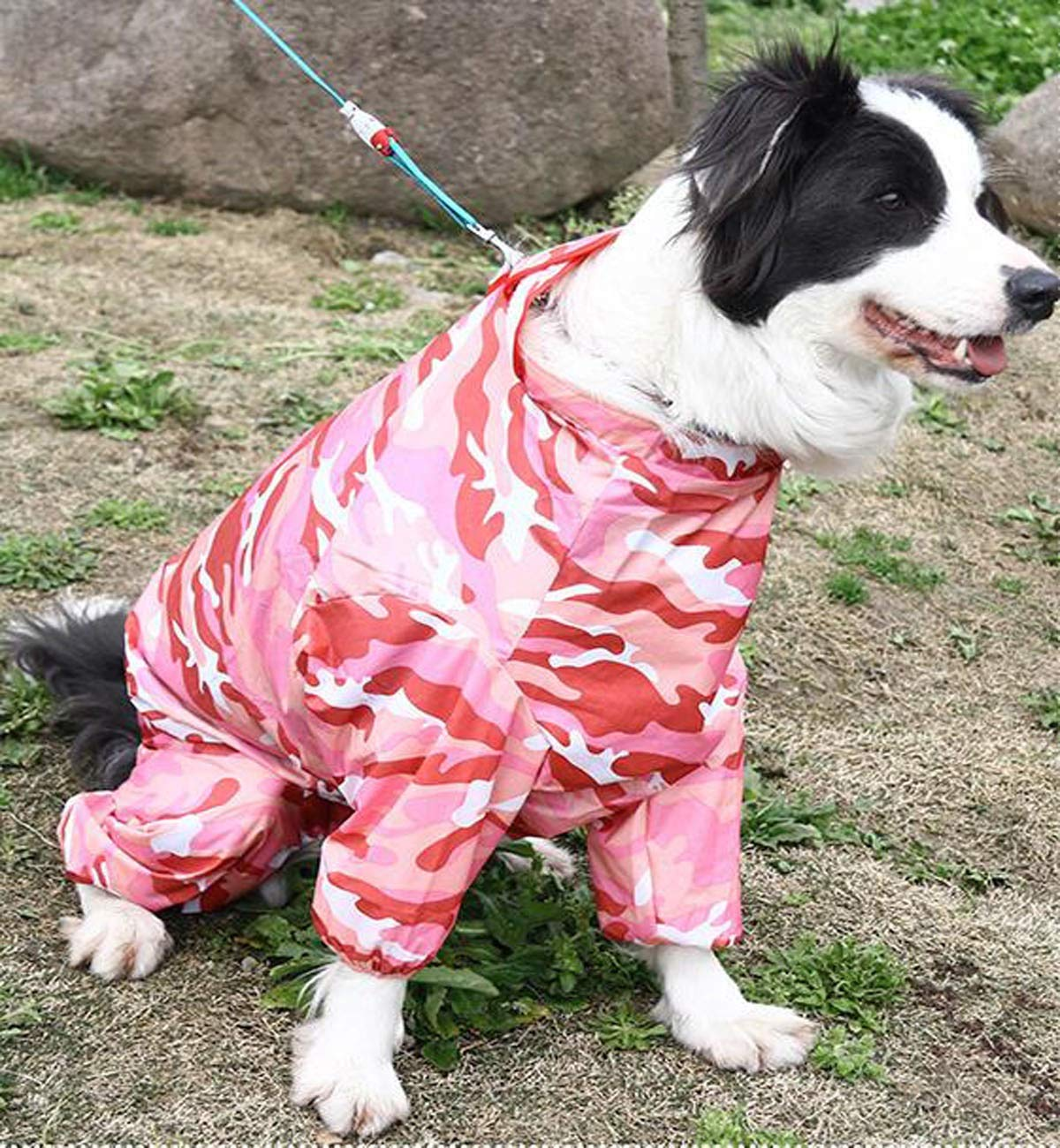Qiaoxianpo01 Dog Raincoat, Medium and Large Dogs, Pet Four-Legged Waterproof Suit Elegant (color   Pink, Size   30 )