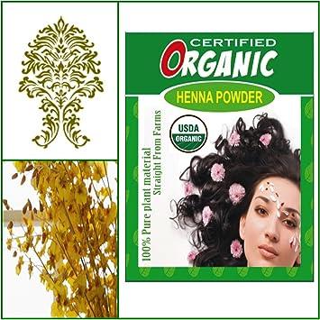 Amazon Com One Box 100g Usda Certified Organic Henna Hair Color