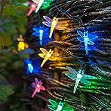 Guirlande Lumineuse Solaire de 30 Libellules aux LED Multicolores de Lights4fun