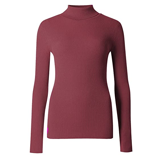 da096a5303d5 Blush Avenue New Women s Plain Ribbed Pollo Neck Stretch Long Sleeve Top  Jumper One Size 8