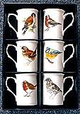 Garden Birds Bone china mugs - set of 6 gift boxed 10oz china mugs each different bird