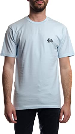 Stussy Camiseta STÜSSY Basic Tee Hombre Azul S: Amazon.es: Ropa y accesorios