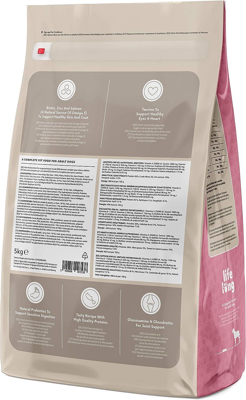 Marca Amazon - Lifelong Complete- Alimento seco completo para perros perros adultos con salmón y arroz, 2 x 5 kg