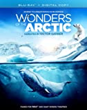 Wonders Of The Arctic [Blu-ray]