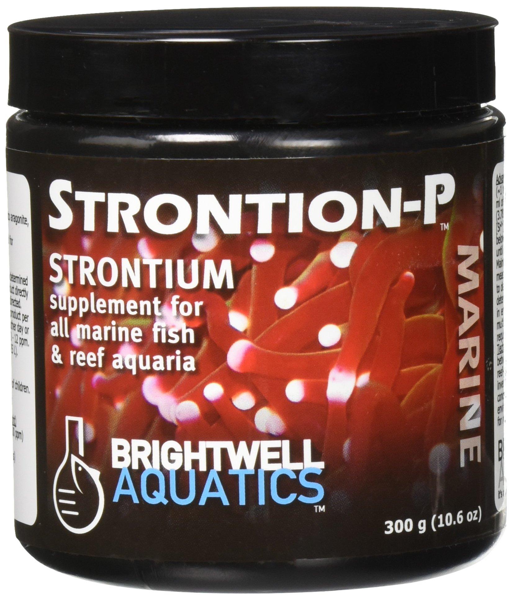 Brightwell Aquatics Strontion-P Dry Strontium Supplement, 300 grams