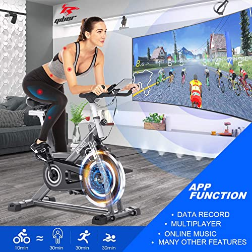 Bellar Sport Indoor Cycling Bike Stationary