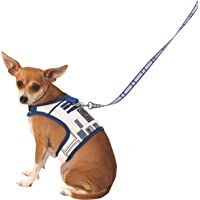 Star Wars Classic R2D2 Pet Leash with Harness, Small