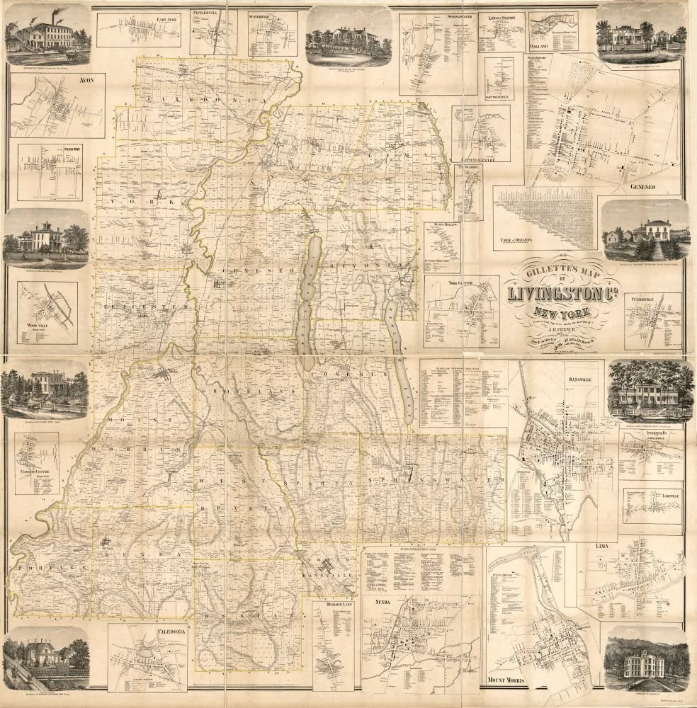 1858 map Gillette's map of Livingston Co, New York : from Actual surveys|Size 24x24 - Ready to Frame| Cadastral Cities and Towns|Dansville|Dansville NY|Geneseo|Geneseo NY|Landowners|Livingston County