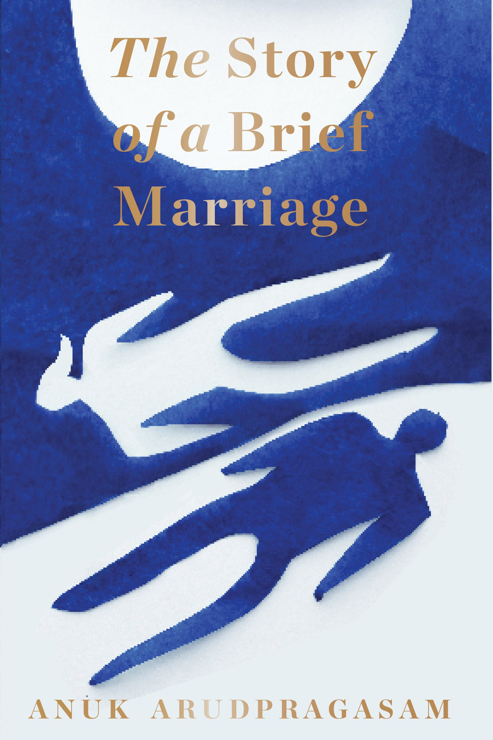The Story of a Brief Marriage pdf