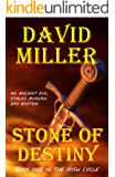 Stone of Destiny (The Irish Cycle Book 1)