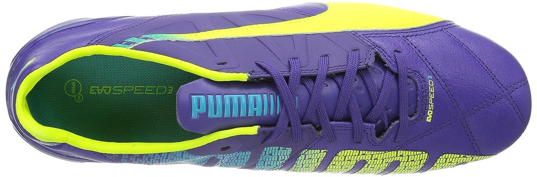 Puma Puma Puma Evospeed 3.3 Fg, Scarpe da Calcio da Uomo 539066