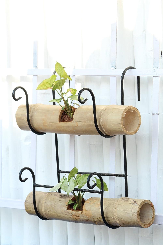 railing planters online india
