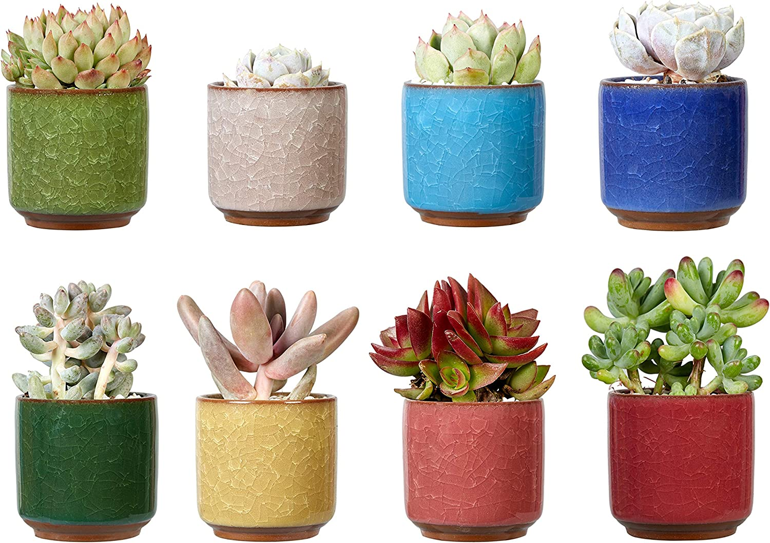 Ceramic Succulent Cactus Planter Pots - MAYZBO 2.5 Inch Ice Crack Glaze Porcelain Handicraft Containers for Home Office Desk Decoration with Drainage Hole, Set of 8