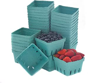 JA Kitchens Green Molded Pulp Fiber Berry / Produce Vented 1 Pint Basket (40 Pieces)
