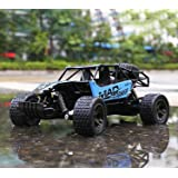 RC Cars, All Terrain Remote Control High-Speed Telecar, Offroad 2.4Ghz 2WD Remote Control Monster Truck, Christmas Gift for Kids and Adults