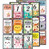 exciting Lives Set of 27 Multicolor Baby Milestone Cards 14 x 9.5 cm - Gift for Babyshower New Parents New Born Babies