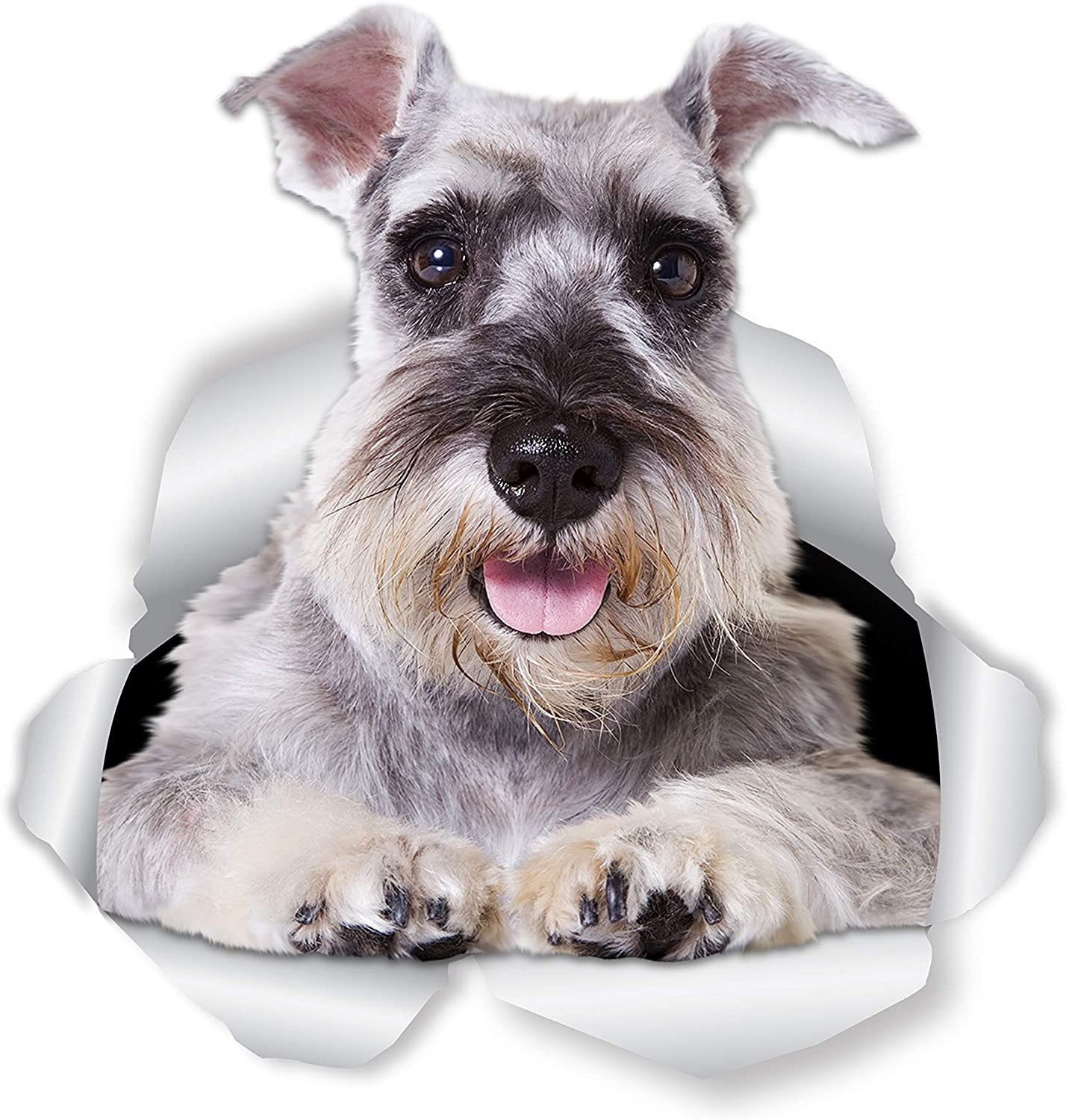 Winston & Bear Super Schnauzer Dog Wall Decals - 2 Pack - Schnauzer 3D Sticker Decals for Walls, Cars, Toilet and More - Retail Packaged Gray Schnauzer Gifts
