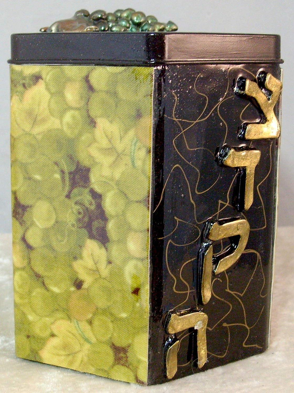 Amazoncom Decorative Tzedakah Box Green Grapes Handmade