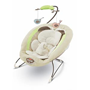 Fisher- Price My Little Snugabunny Deluxe Bouncer