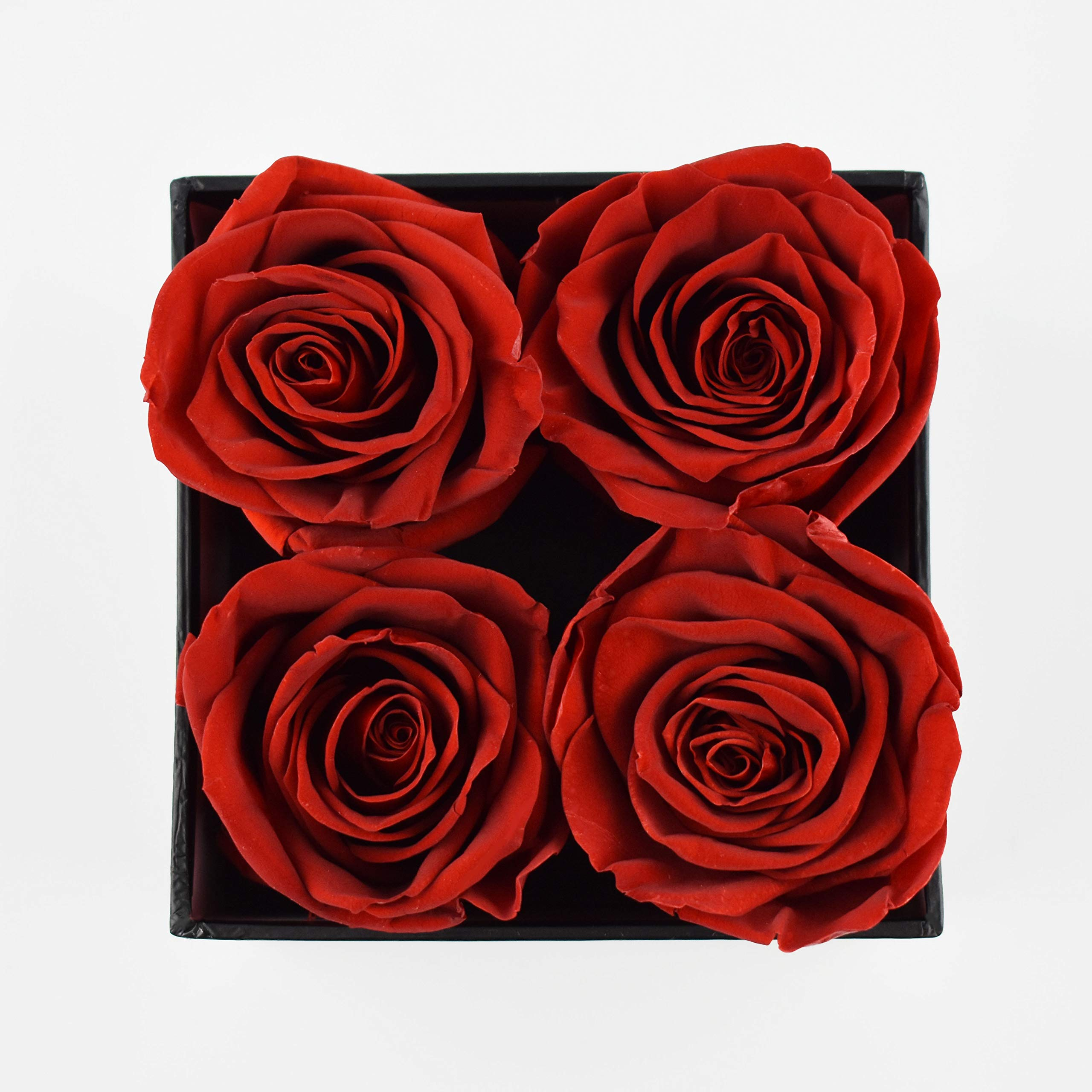 Premium Roses | Model Posh | Real Roses That Last 365 Days | Roses in a Box| Fresh Flowers (Black Box, Small) by Premium Roses (Image #4)