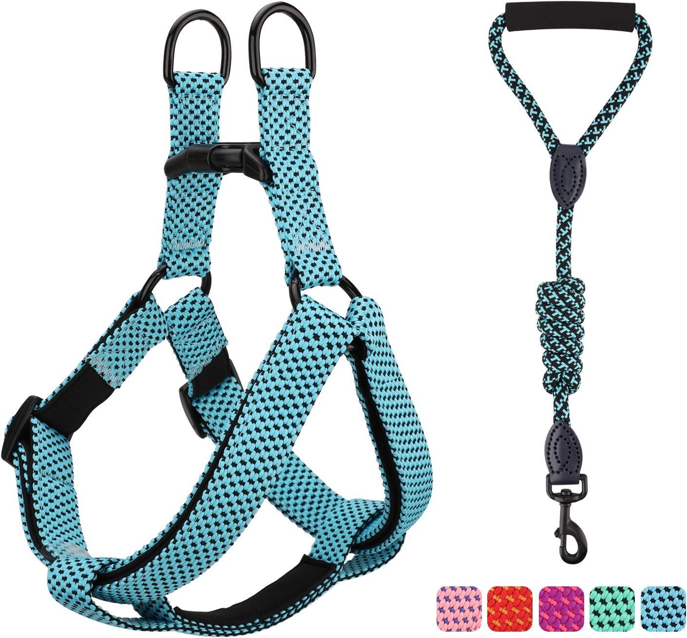 Pawaboo Kit de Correa y Arnés para Perro, Ajustable Cuerda y Arnés del Chaleco para Cachorro para Entrenamiento pasear Correr con su Mascota, Talla L - Azul: Amazon.es: Productos para mascotas
