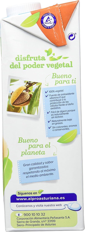 Alpro Central Lechera Asturiana Bebida de Almendra Sin Azúcar ...