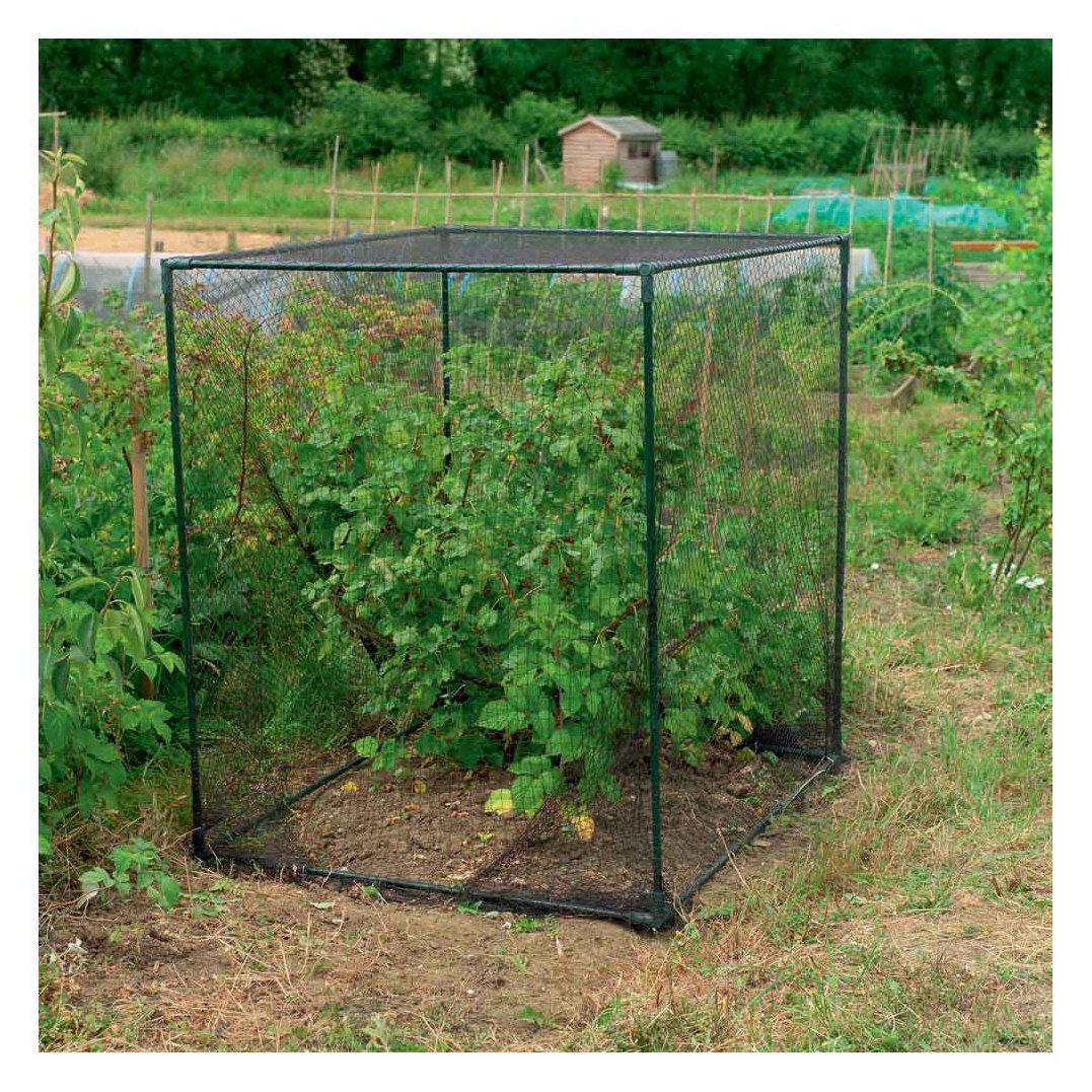 Gardman 7660 Fruit Cage Small, 3' 3'' L x 3'11'' W x 3'3'' H