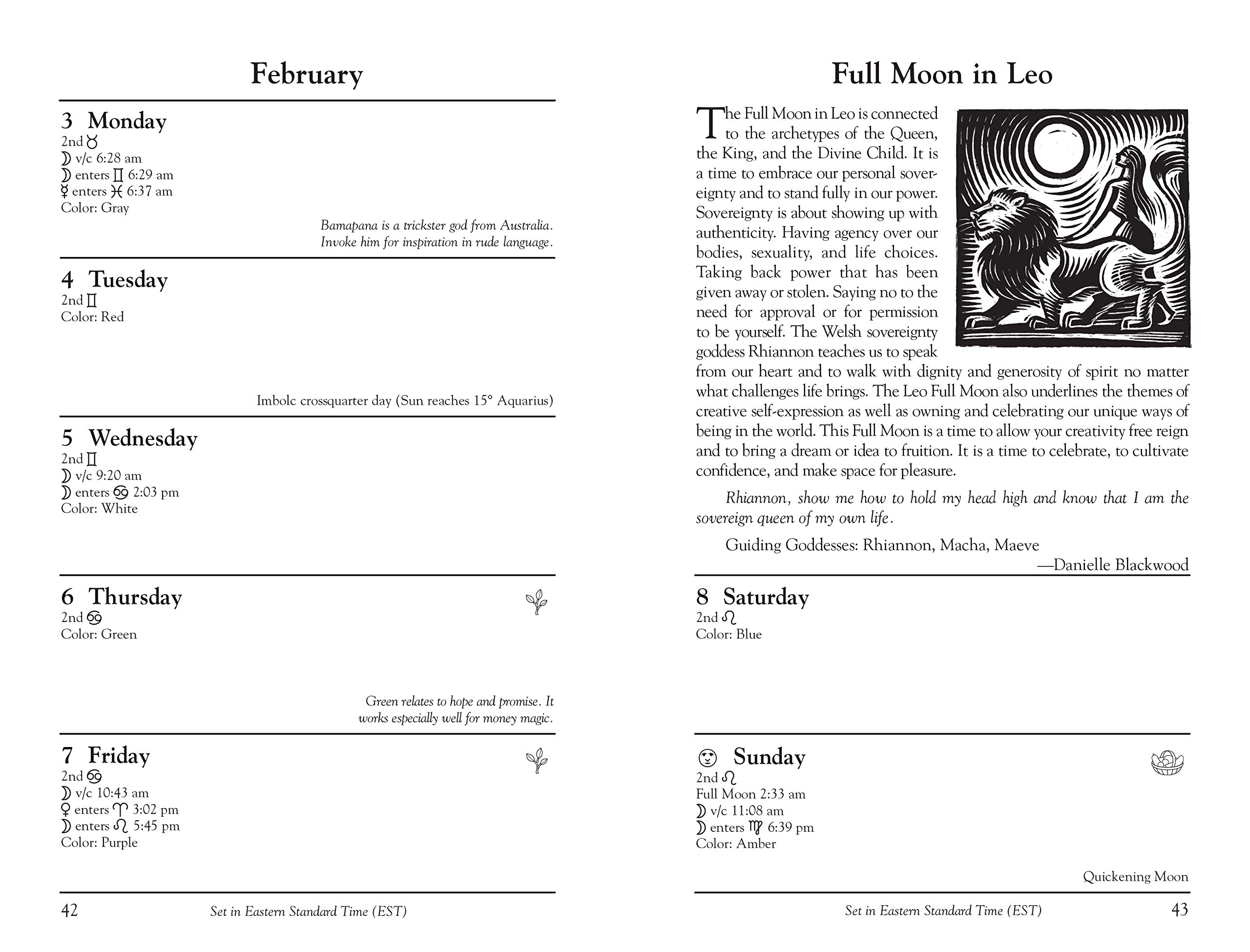 Llewellyns 2020 Witches Datebook: Charlie Rainbow Wolf ...