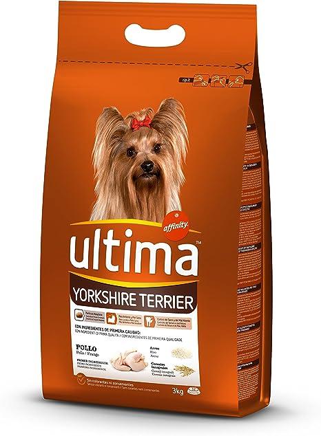 Ultima Comida para Perros Yorkshire Terrier con Pollo, 3 kg ...