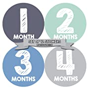 Monthly Baby Stickers by Months In Motion | 12 Month Milestone Sticker for Newborn Babies Boy (015)