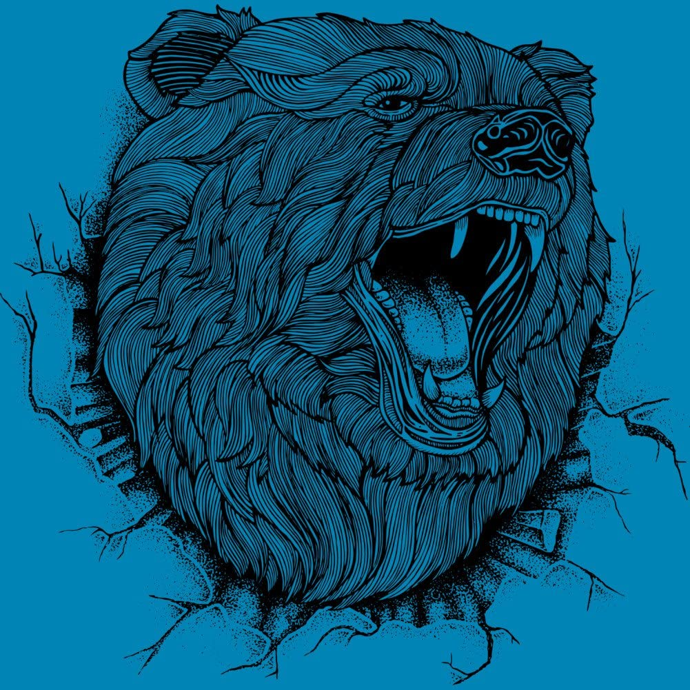 Design By Humans ANGRY BEAR Boys Youth Graphic T Shirt
