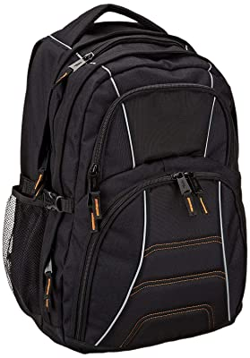 AmazonBasics Backpack