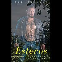 ESTEROS: Romance Gay en español (SAGA BESOS OCULTOS nº 8) (Spanish Edition) book cover