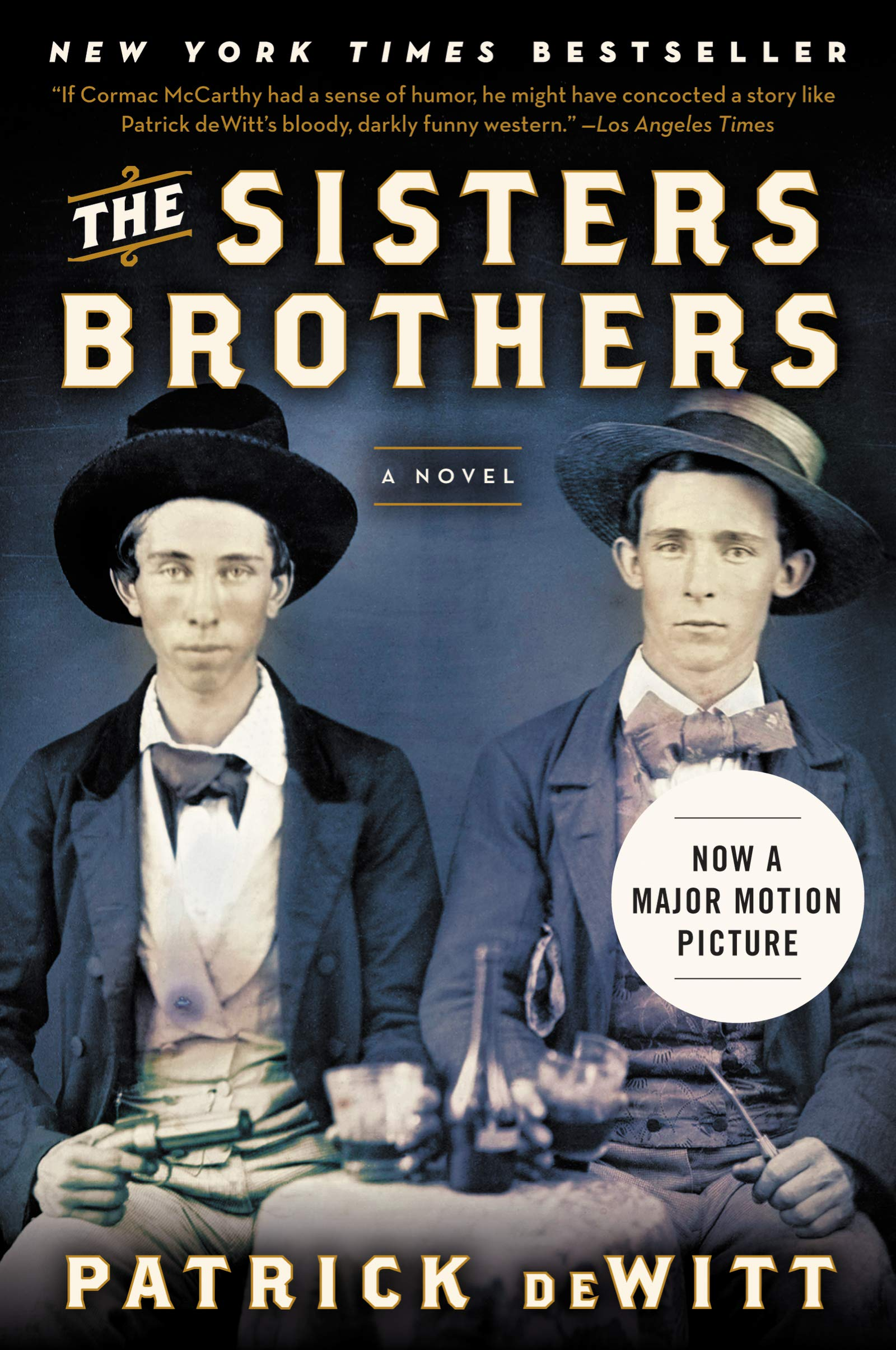 Image result for the sisters brothers book