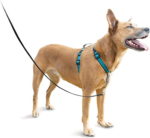 PetSafe-3-in-1-Harness-No-Pull-Dog-Harness-for-X-Small,-Small,-Medium-and-Large-Breeds-from-the-Makers-of-the-Easy-Walk-Harness