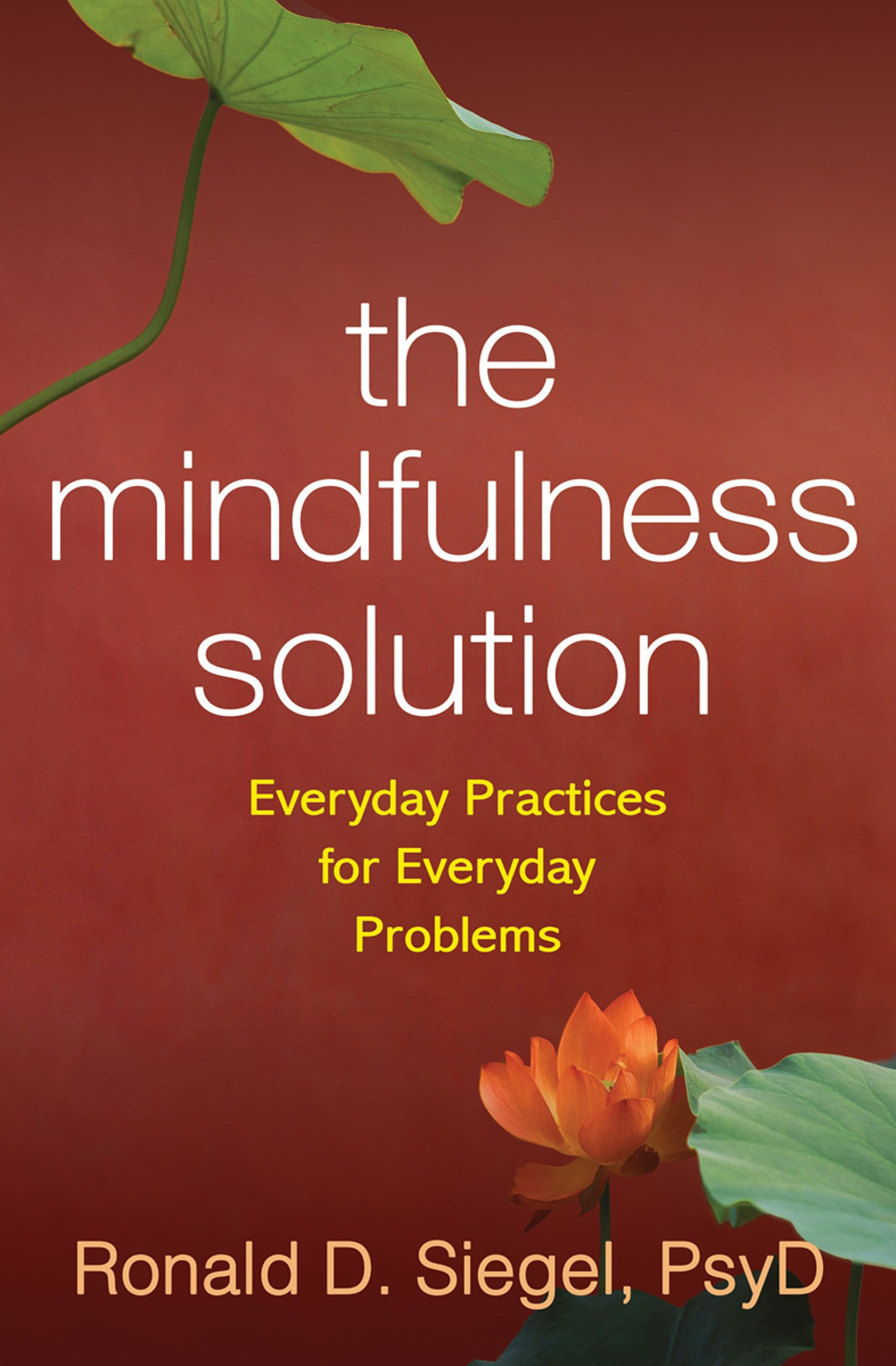The Mindfulness Solution: Everyday Practices For Everyday Problems: Ronald  D Siegel: 0783324935004: Amazon: Books