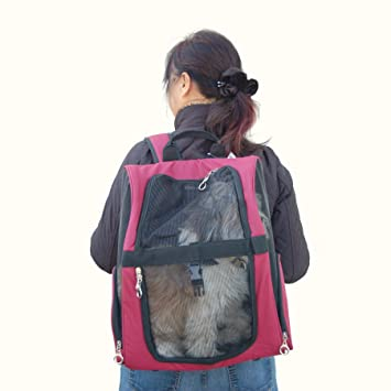 Amazon.com : Anima Burgandy Pet Carrier Dog Rolling Backpack ...