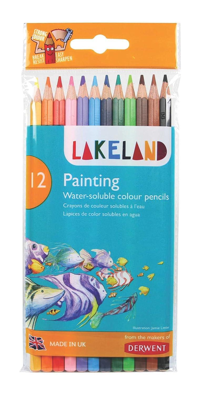 Amazon.com: Derwent Lakeland – Lápices de pintura: Office ...