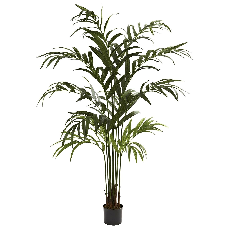 70a1f2af703 Amazon.com  Nearly Natural 5356 Kentia Palm Tree