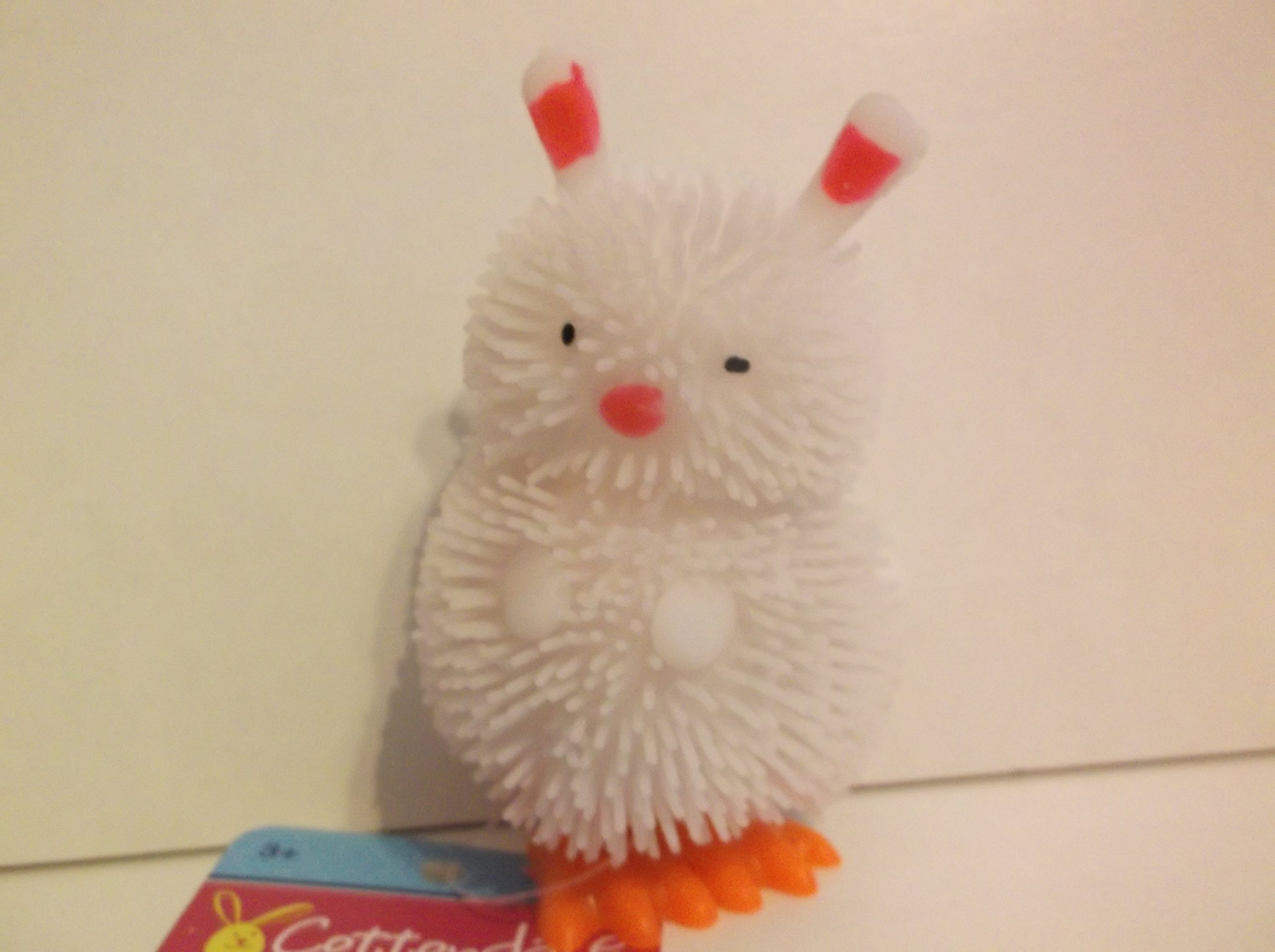 CVS Pharmacy CottondaleWind-Up Animal