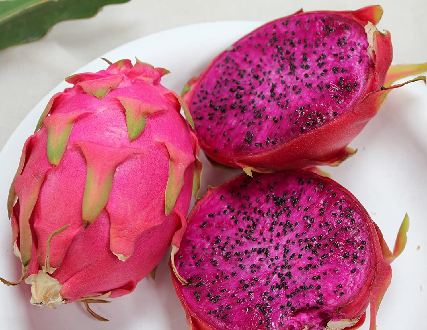 Dragon fruit comes in three colors white pink and red or magenta white - Amazon Com 20 Purple Dragon Fruit Pitaya Pitahaya Strawberry Pear Hylocereus Undatus Cactus Seeds By Seedville Fruit Plants Patio Lawn Garden