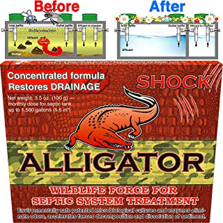 Septic treatment, safe enzyme and advanced bacteria for best septic tank treatment, flush toilet closet with bio active organic corn grits powder monthly for aerobic odor and sludge drainfield control
