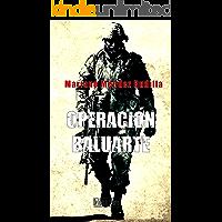Operación Baluarte